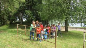 Izlet korisnika na jezero Šoderica, igra na livadi (5)