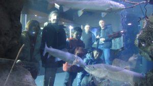 Posjet Javnoj ustanovi Aquatika, slatkovodnom akvariju - korisnici u akvariju