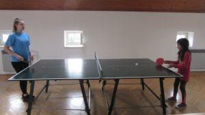 Natjecanju u stolnom tenisu u Lipiku (5)